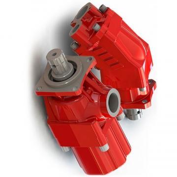 POMPA IDRAULICA TANDEM 705-52-10070 per Komatsu Escavatore PC30-1