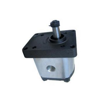 5179726 pompa idraulica per Ford New Holland TL70 TL80 TL90 TL100 TM115 TM120