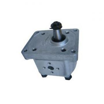 0510525342 Trattore CCW pompa idraulica per Landini 3538957M91 3543134M91