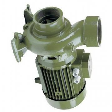 Professionale Acciaio Inox Pompa Centrifuga Dell'Acqua Giardino 3,6 m3/H Jet