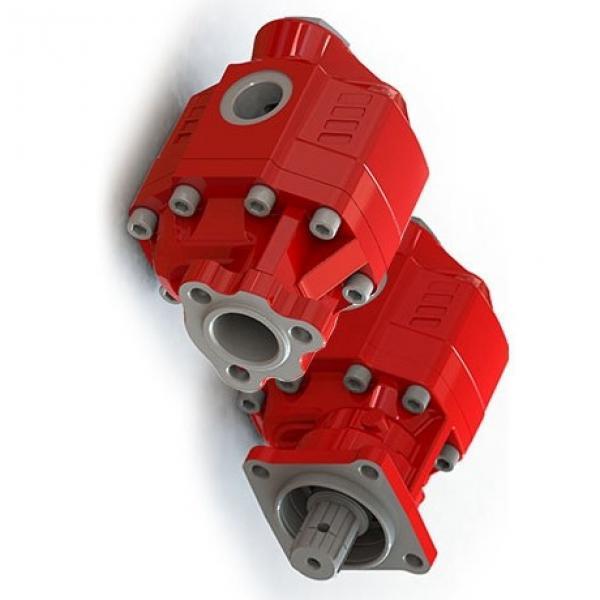 Cilindro Idraulico Doppia Azione 100/50 - 60 fino A 1100mm Hub senza Fissaggio