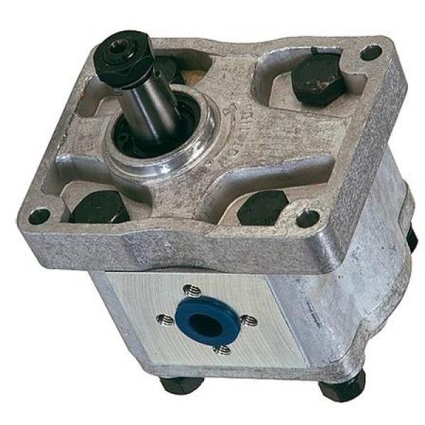 TITAN PRO SPACCALEGNA POMPA | 8 T Benzina Log Splitter Splitter legno |