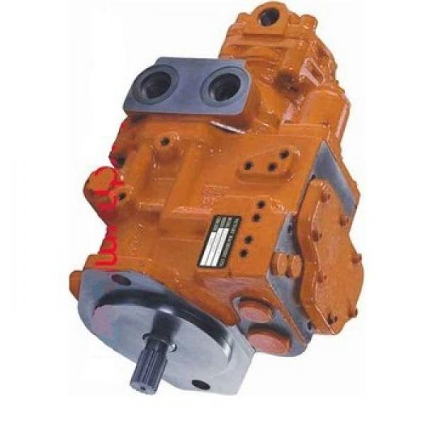 Originale Parker / Jcb 3C Doppio Pompa Idraulica 333/G5392 29 + 23cc/Rev IN Eu