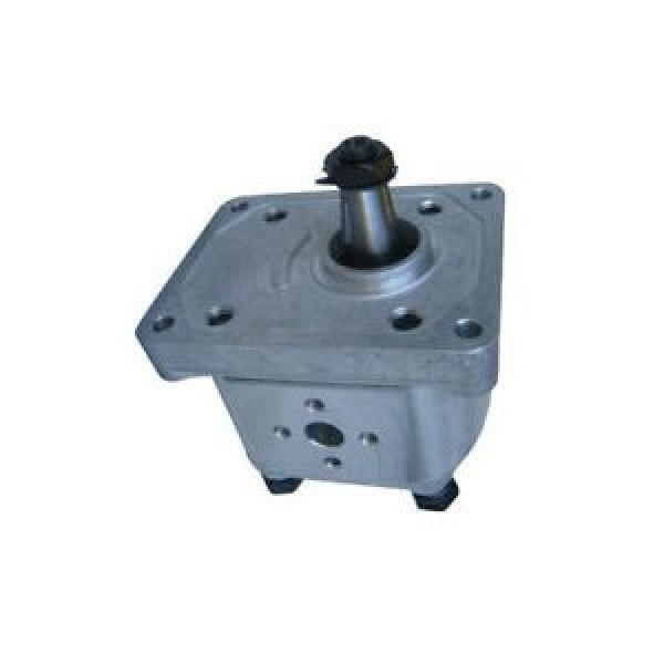 D136083 253541A1 POMPA IDRAULICA Accoppiamento Accoppiatore per CASE 580K 580SK 590 590SL